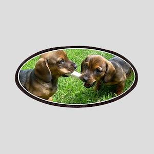 dachshund puppies Patch