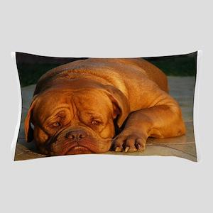 dogue de bordeaux Pillow Case