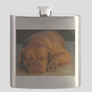 dogue de bordeaux Flask