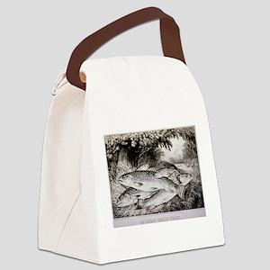 trout Canvas Lunch Bag