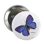 Blue Butterfly 2.25