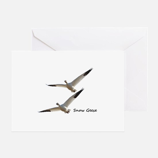 Funny Geese Greeting Card