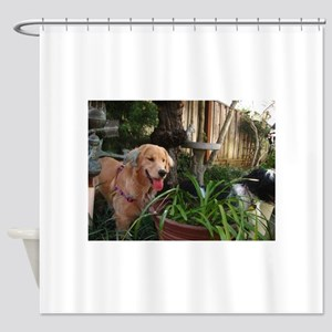 Nala golden retriever puppy in gard Shower Curtain