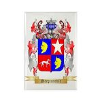 Scepanovic Rectangle Magnet (100 pack)