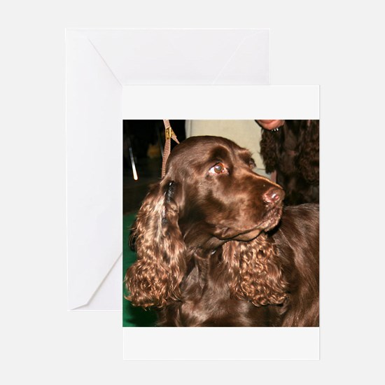 field spaniel Greeting Cards