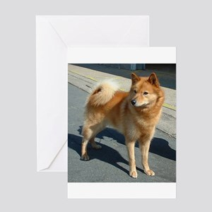 Finnish hunting dog greeting cards cafepress finnish spitz full greeting cards m4hsunfo