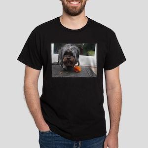 Kona Lhasa type dog eating a persimmon T-Shirt