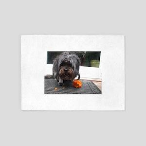 Kona Lhasa type dog eating a persim 5'x7'Area Rug