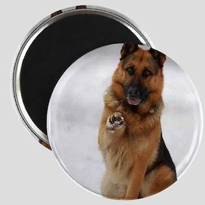 German Shepherd Magnets