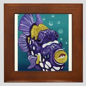 Clown Trigger Fish Framed Tile