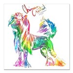 """Colorful Chinese Crested Square Car Magnet 3"""""""