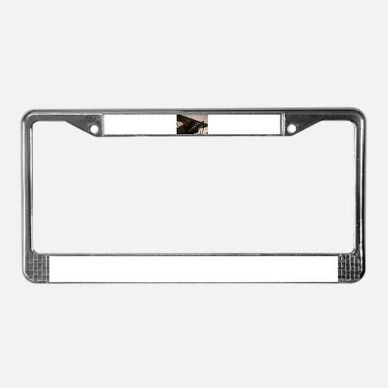 Bi Plane License Plate Frame