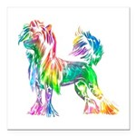 Chinese Crested Dog Square Car Magnet 3