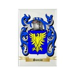 Sanzio Rectangle Magnet (100 pack)