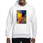 Ter Cafe / Border T Hooded Sweatshirt
