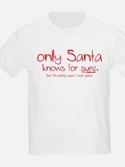 Santa Knows T-Shirt