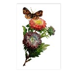Butterfly Flower Garden Postcards (Package of 8)