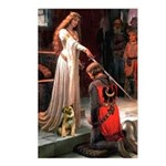 Accolade / Border T Postcards (Package of 8)
