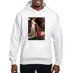 Accolade / Border T Hooded Sweatshirt