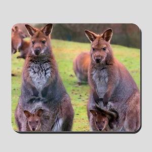 Kangaroos Mousepad