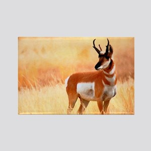 Lone Antelope Rectangle Magnet