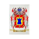Santillan Rectangle Magnet (100 pack)