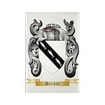 Sankey Rectangle Magnet (100 pack)