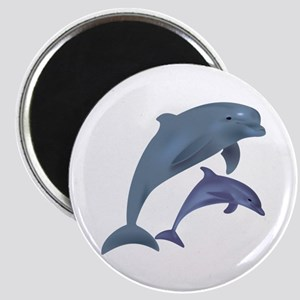 Dolphins Magnets