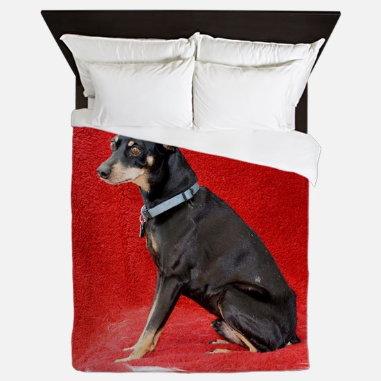 Funny Rescued horse Queen Duvet