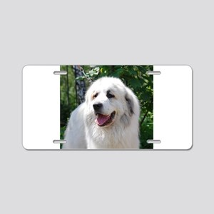 great pyreneese Aluminum License Plate