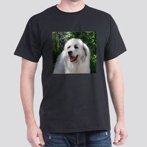great pyreneese T-Shirt