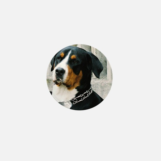 greater swiss mountain dog Mini Button