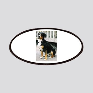 greater swiss mountain dog sitting Patch