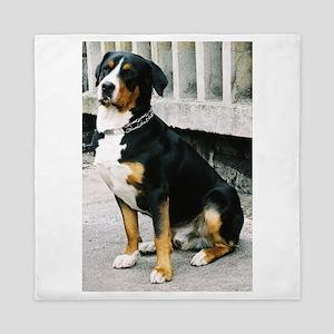 greater swiss mountain dog sitting Queen Duvet