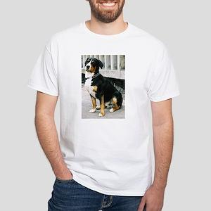 greater swiss mountain dog sitting T-Shirt