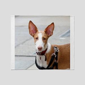 ibizan hound Throw Blanket