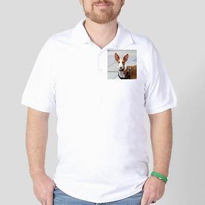 ibizan hound Golf Shirt