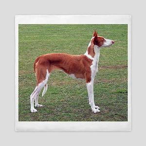 ibizan hound full Queen Duvet