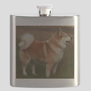 icelandic sheepdog full Flask