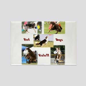 Red Dogs Rule - Frisbee! Rectangle Magnet