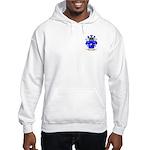 Samaniego Hooded Sweatshirt