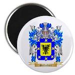 Salvadori Magnet