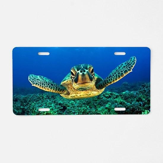Unique Turtle Aluminum License Plate