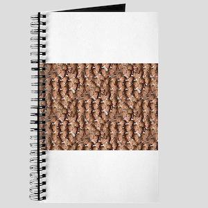 donald drumpf Journal