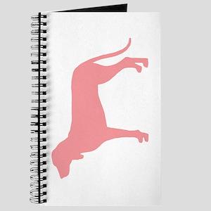 Ariegeois Retro Pink Journal