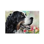 Bernese Mountain Dog Painting Magnets