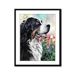 Bernese Mountain Dog Painting Framed Panel Print