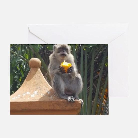 Cute Mauritius Greeting Card
