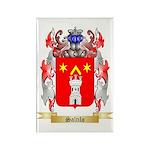 Saltilo Rectangle Magnet (100 pack)