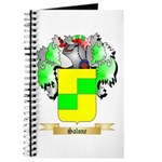 Salone Journal